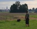 HZP 17.09.2011 Aschelsried