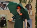 Messe 01.10. bis 05.10.2011 »Jagd und Natur« Landshut