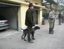 VGP 16. / 17.10.2010 Iggensbach