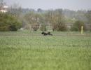 VJP 23.04.2011 Eitting