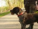 VJP Max-Neumayr Gedächtnis 09.04.2011