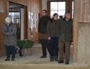 Zuchtschau 17.02.2013 Wolnzach
